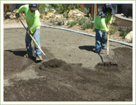 Raking mulch into top soil and leveling the ground